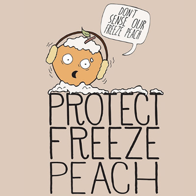 Protect_Freeze_Speech